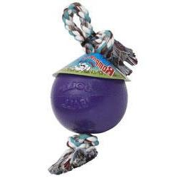 Jolly Pet Romp-n-Roll Durable Dog Toy Purple 8in